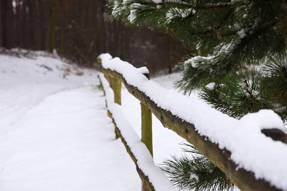 Zimní krajina se sněhem před vánoci